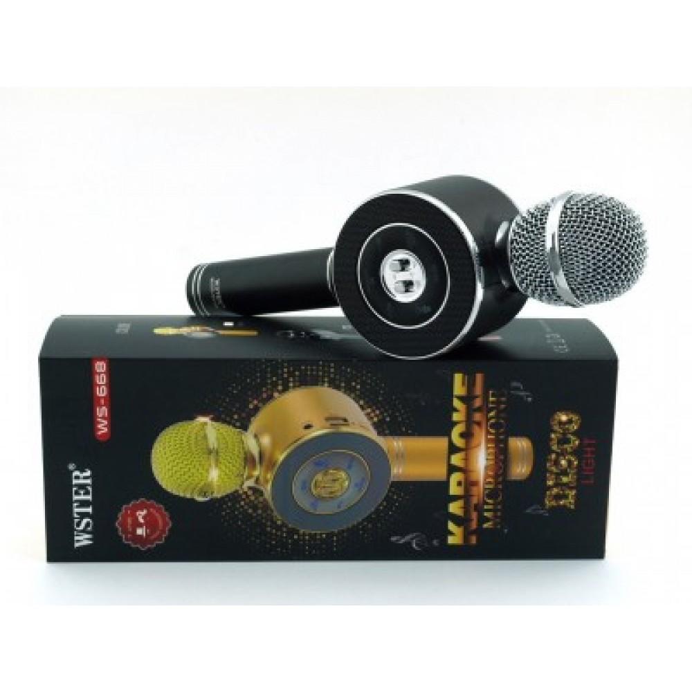 Караоке - микрофон DM Wster WS 668 беспроводной