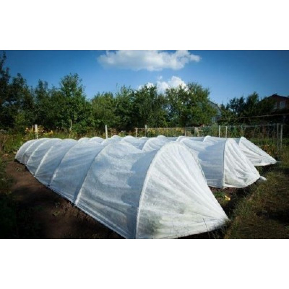 Агропарник Agreen 120 см ширина, 80 см высота, 8 метра, плотность 50 г/м.кв.